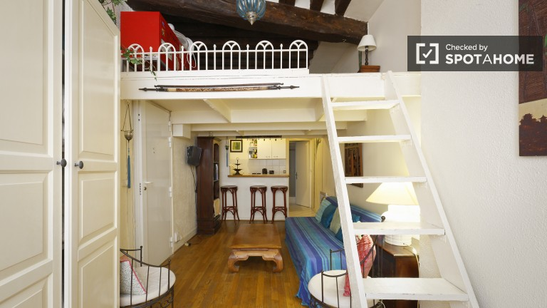 30m2 Characterful Studio Apartment For Rent In Louvre, Paris
