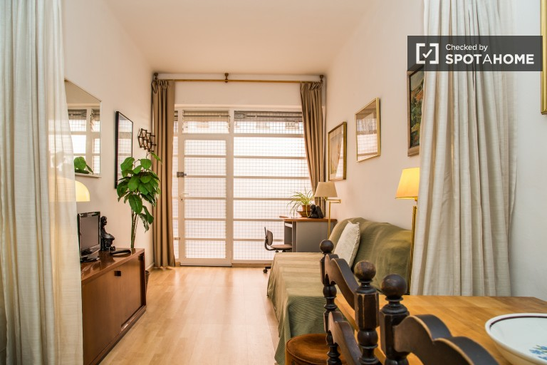 Renovated Studio Flat Close to Sants Station - Barcelona