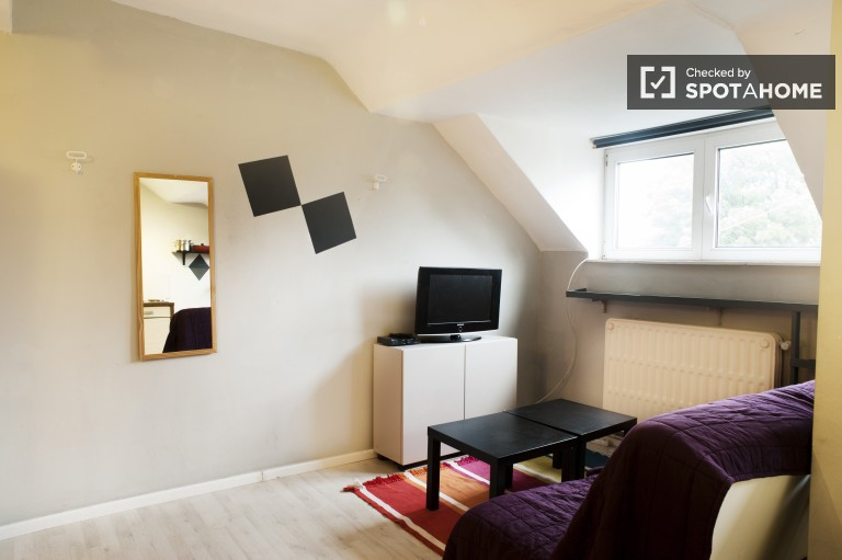 Studio apartments for rent in BrusselsSpotahome