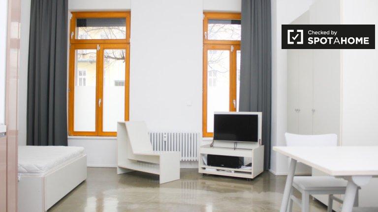 Nowoczesny apartament typu studio do wynajęcia w Freidrichshain w Berlinie