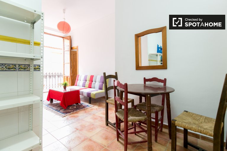 Spacious 2-bedroom apartment for rent in the City Centre of Granada
