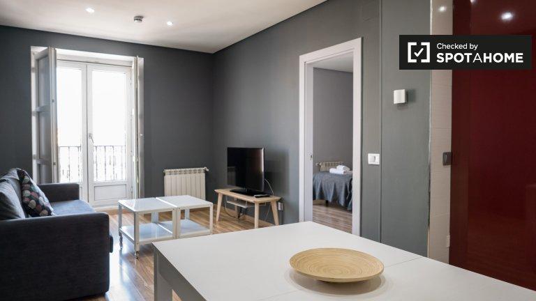 Mieszkanie z 1 sypialnią do wynajęcia w centrum Madrytu