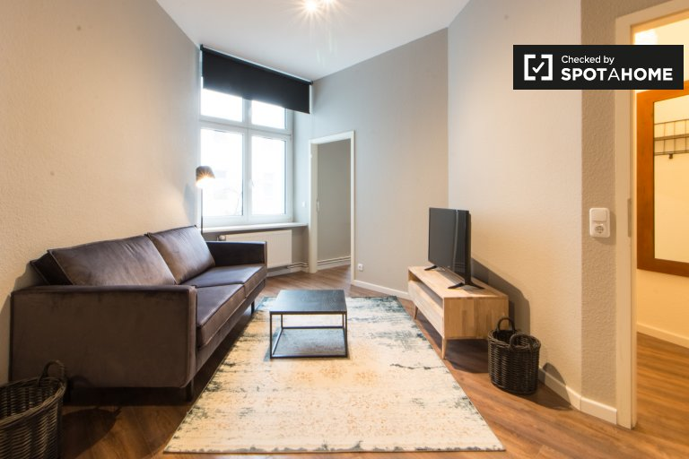 Modern and spacious studio apartment for rent in Friedrichshain