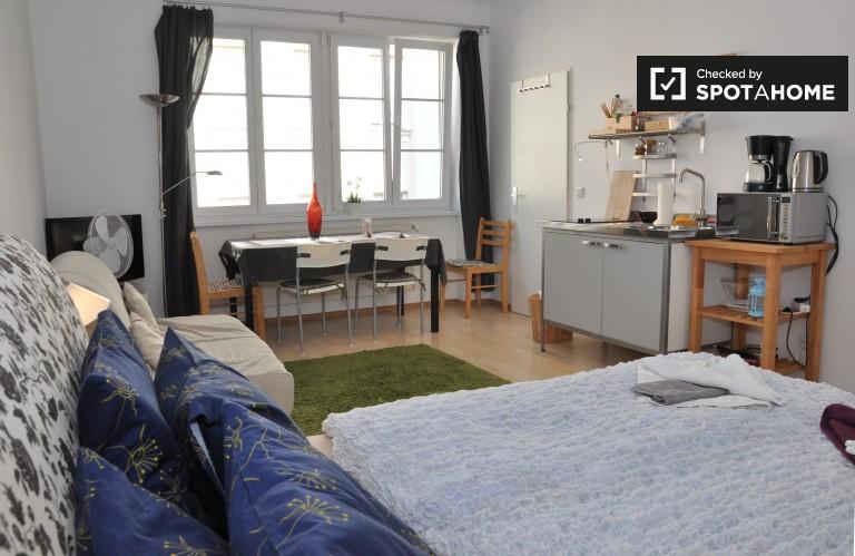 Stunning studio apartment to rent in Margareten