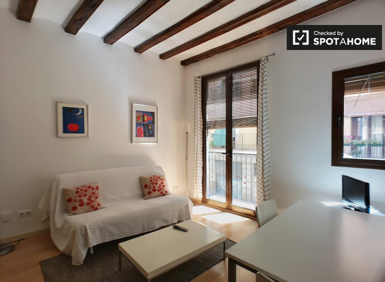 Cozy 1-bedroom apartment for rent in El Born, Barcelona