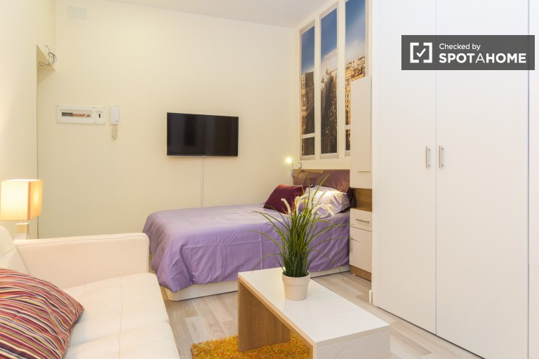 Renovated modern studio with AC in the city center of Madrid