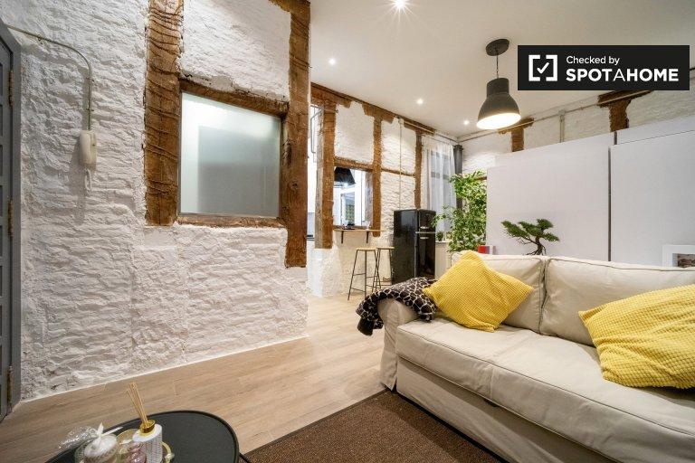 Uroczy apartament typu studio do wynajęcia w Lavapiés, Madryt