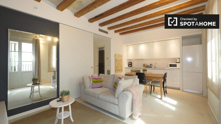 Fantastic 3-bedroom apartment for rent in El Born, Barcelona
