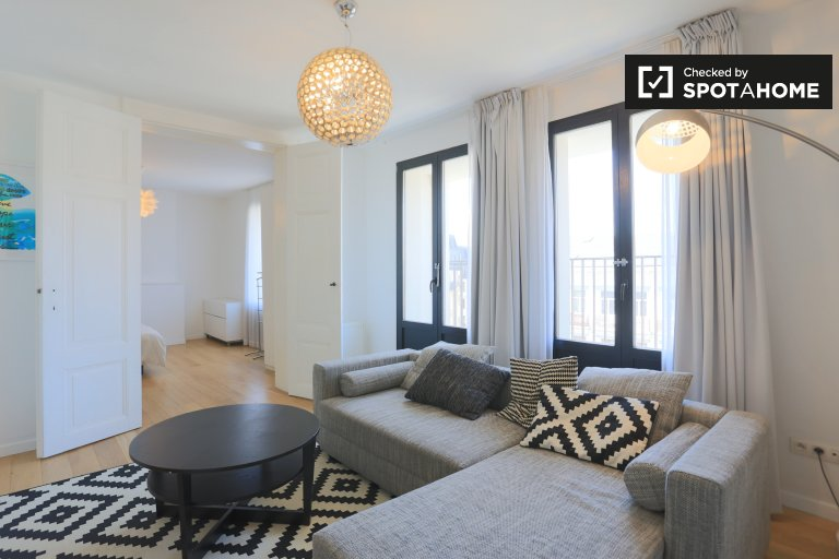 Appartement 1 chambre élégant à louer Centre-ville de Bruxelles