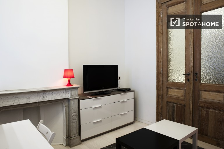 Modern 1-bedroom apartment for rent in Ixelles, Brussels