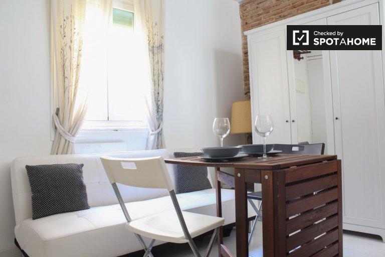 Studio confortable avec AC à louer à Chueca, Madrid