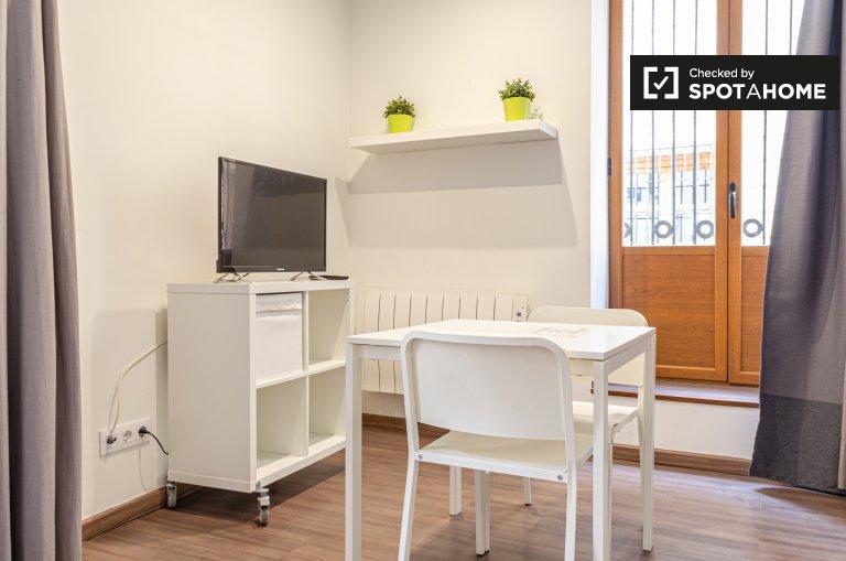 Ground floor studio apartment for rent in Ciutat Vella