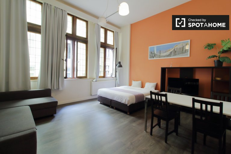 Stylish studio apartment for rent in Brussels' City Center