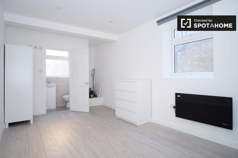 Hammersmith ve Fulham, Londra'da kiralık stüdyo daire