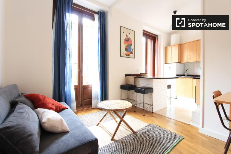 Appartamento in affitto a Embajadores, Madrid