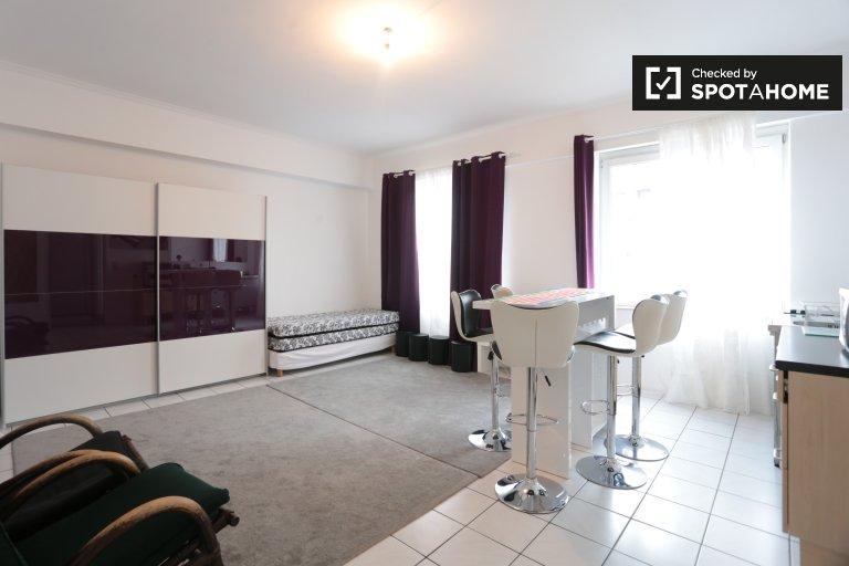 Modne 1-pokojowe mieszkanie do wynajęcia w Centre, Bruksela