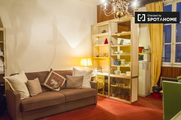 Cozy Studio Apartment For Rent Near Jardin Du Luxembourg In Paris 6, Metro  Saint Sulpice