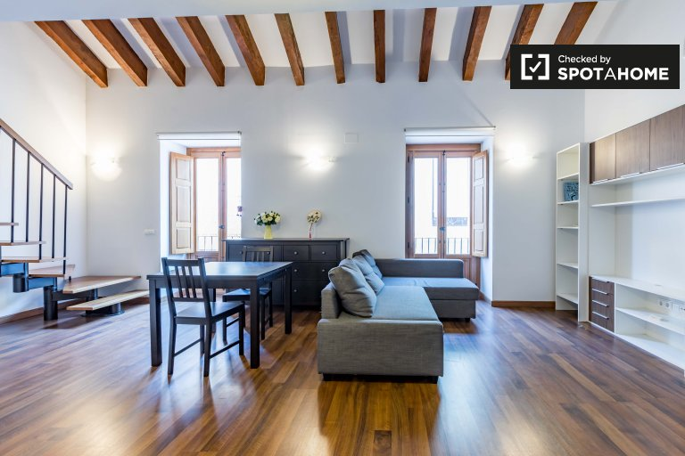 1-bedroom apartment for rent in Central Valencia