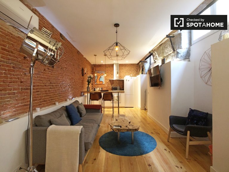 Stylish studio apartment for rent in La Latina, Madrid