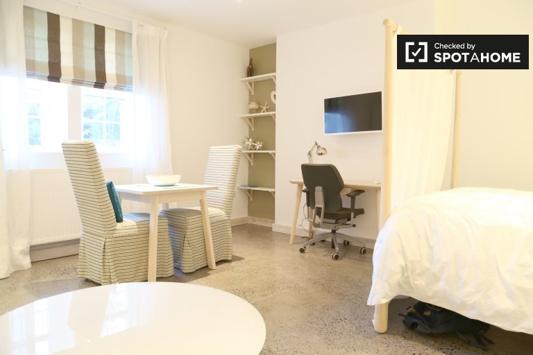 Airy studio flat to rent in Dún Laoghaire, Dublin