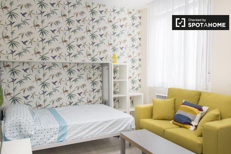 Gemütliches Studio-Apartment zur Miete in Centro, Mardid