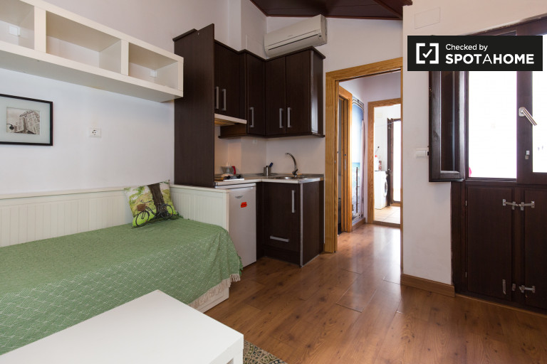 Newly renovated, cosy studio apartment with terrace for rent in Centro