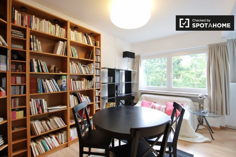 Spacious room in 3-bedroom apartment in Schaerbeek, Brussels