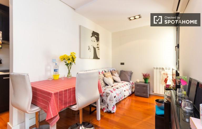 pisos alquiler 1 habitacion madrid