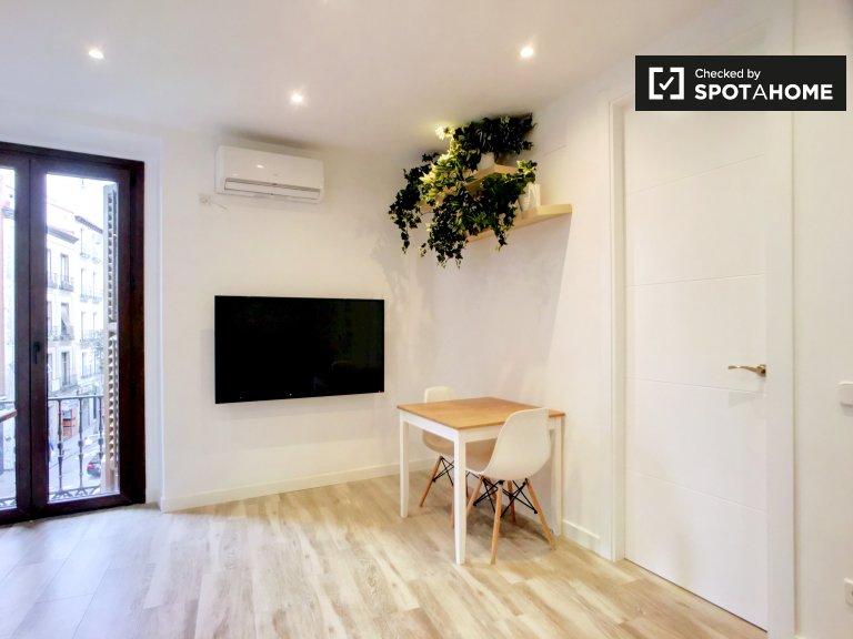 Renovado apartamento de 1 quarto para alugar em Centro, Madrid