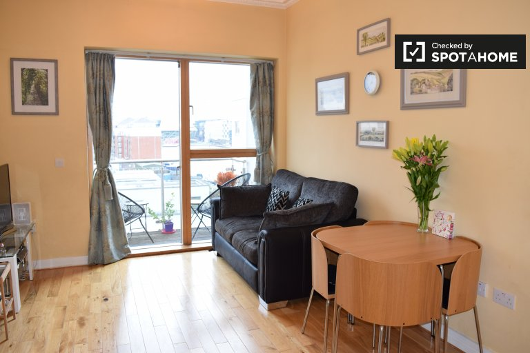 Fashionable 1-bedroom apartment for rent in Ballsbridge