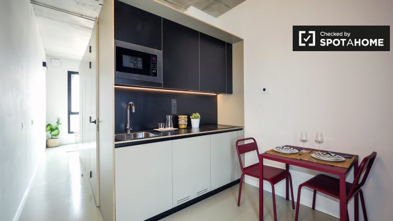 Modern studio apartment for rent in Poblenou, Barcelona