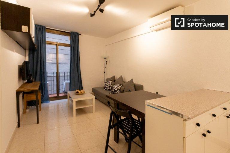Elegant 2-bedroom apartment for rent in El Raval, Barcelona
