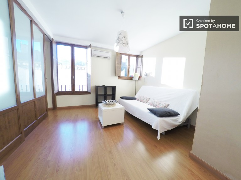 Sunny one bedroom apartment in Albaicin