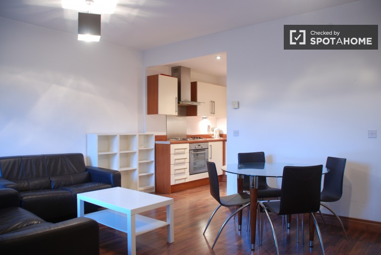 Spacious 1 Bedroom Apartment With A Modern Design For Rent In Dublin