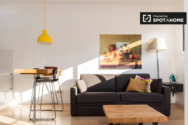 Studio apartment for rent in Barri Gòtic, Barcelona