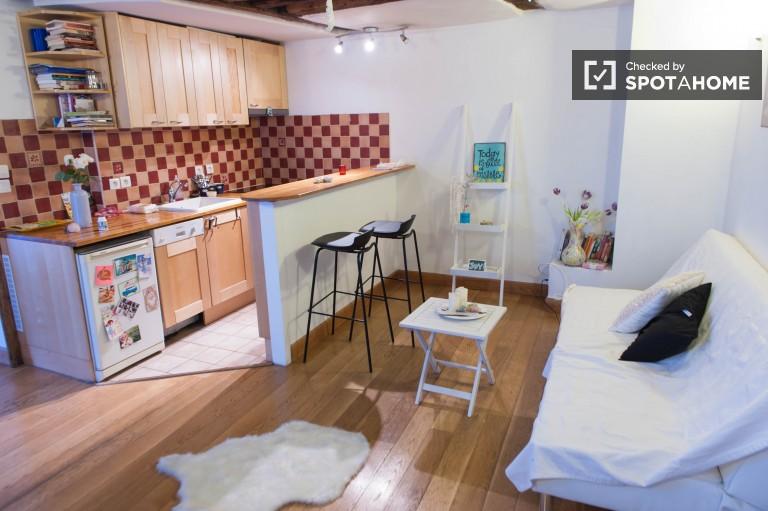 Quiet 1 Bedroom Apartment for Rent near Pantheon, Paris
