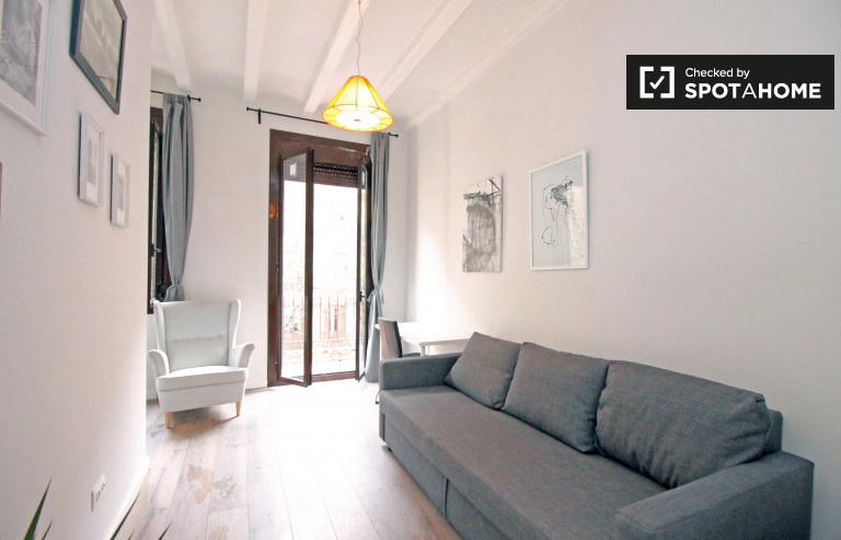 Bright studio apartment for rent - Sant Antoni, Barcelona