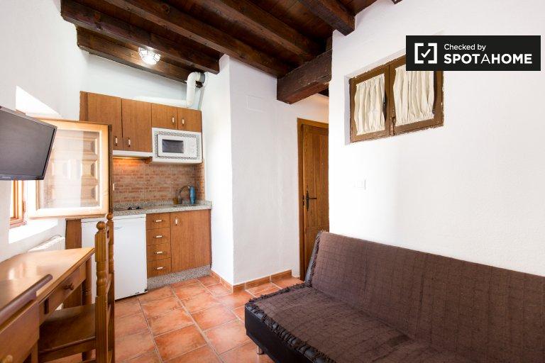 Independent studio apartment for rent in Centro, Granada