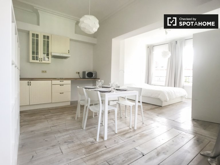 Spacious studio for rent in Brussels City Center