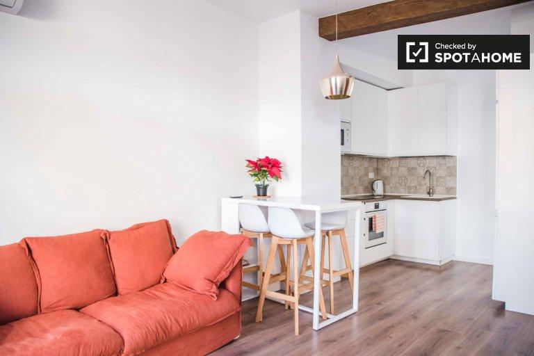 Bel appartement 1 chambre à louer à Ciutat Vella