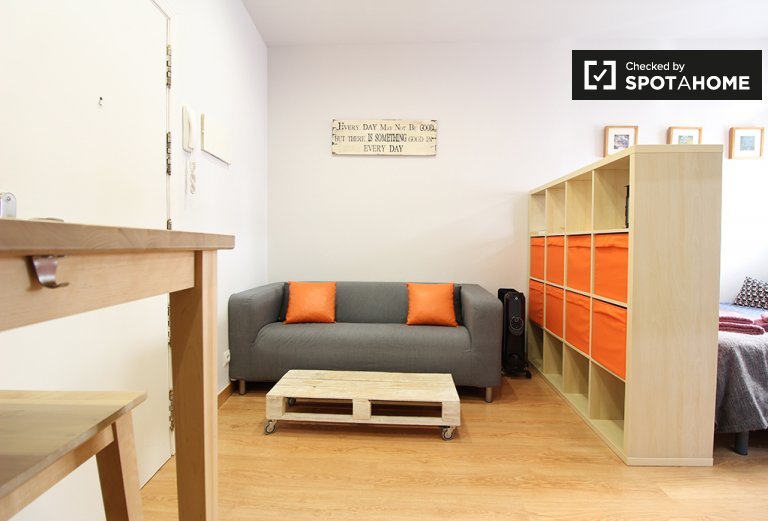 Studio apartment for rent in Madrid Centro