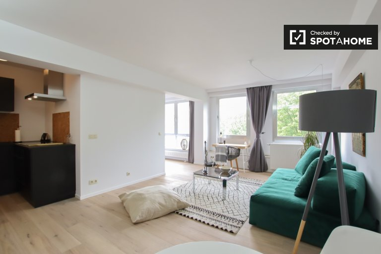Bright studio apartment for rent, Center, Brussels