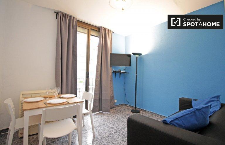 Amazing 2-bedroom apartment for rent near La Sagrada Família
