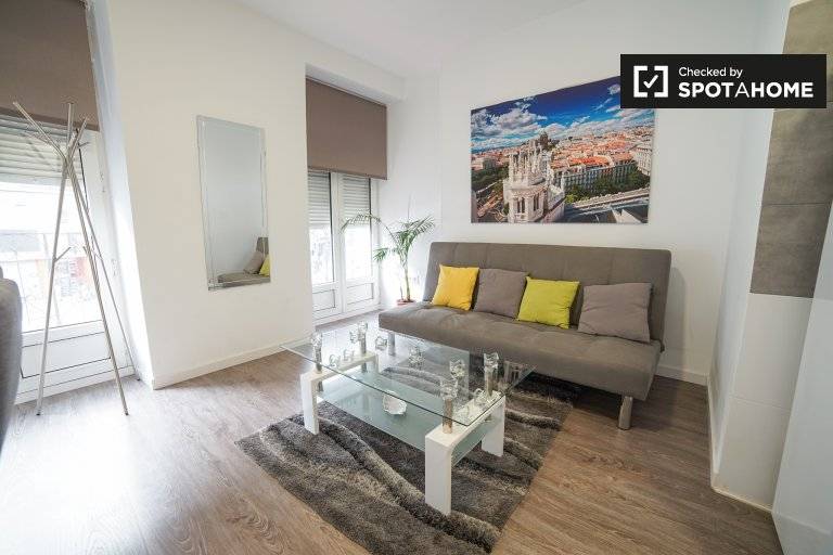 Chic studio apartment for rent in Lavapiés, Madrid