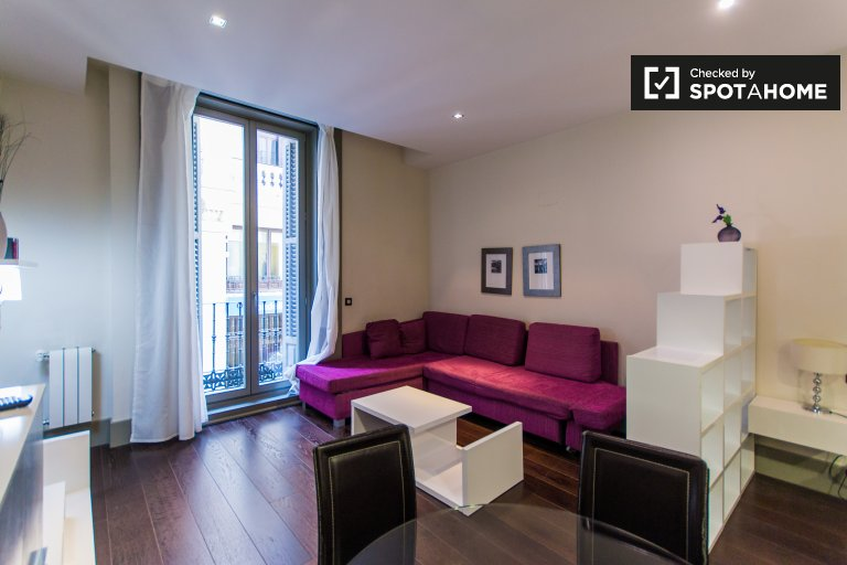 Modern studio apartment for rent in Chueca, Madrid