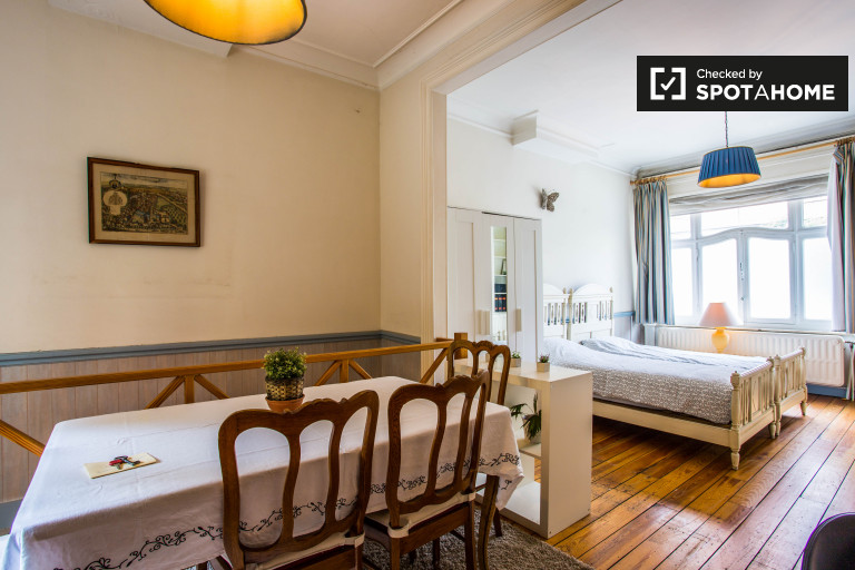 Inviting room in apartment in Schaerbeek, Brussels