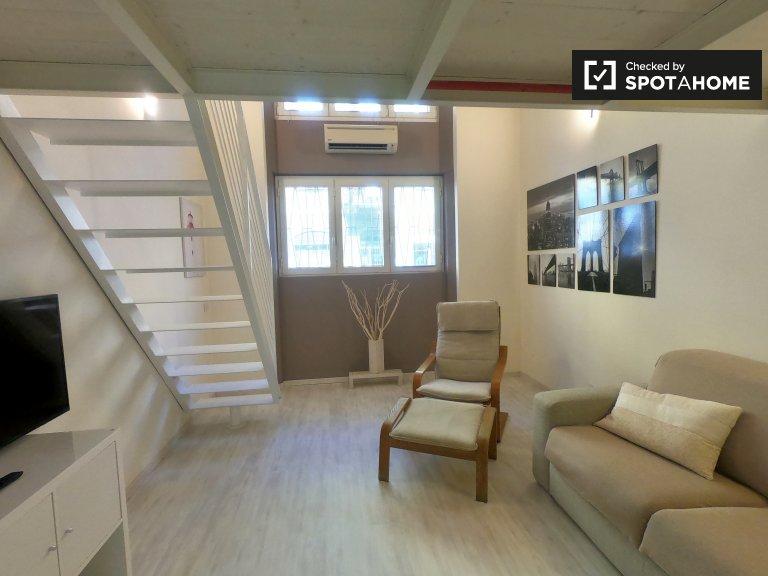 Monolocale ristrutturato in affitto a Lodi, Milano