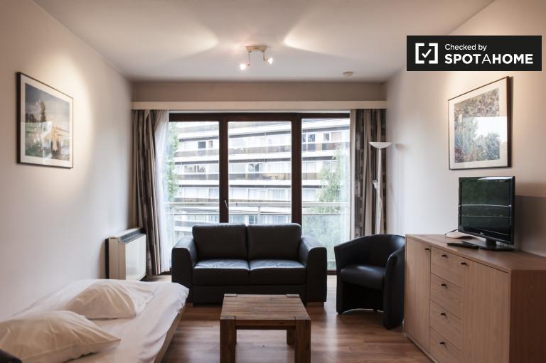 Light studio apartment for rent in Schaerbeek