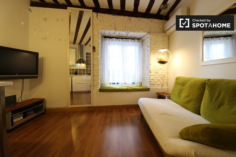 Charming 1-bedroom apartment for rent in Centro, Madrid