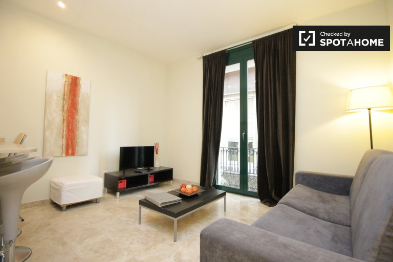 Comfy 1-bedroom apartment for rent in Barri Gòtic, Barcelona